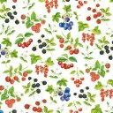 ★オランダ Ambiente 素敵な4つ折りペーパーナプキン デコパージュ ☆かわいい 木の実 さくらんぼ ブルーベリー …