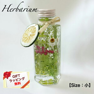 ハーバリウムSize:小【Forest Green/フォレストグリーン】