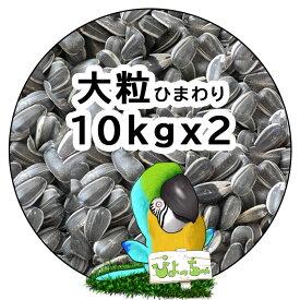 大粒 ひまわりの種 10kg×2 紙袋入 : 鳥の餌 えさ