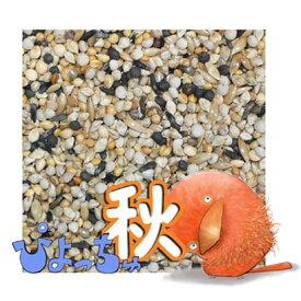 ぴよっちゅ カナリヤ秋用ブレンド 1kg : 鳥の餌 えさ