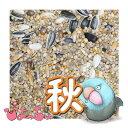 ぴよっちゅ ラブバード・マメルリハ・中型インコ秋用ブレンド 20kg 紙袋入 : 鳥の餌 えさ