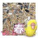 ぴよっちゅ ラブバード・マメルリハ・中型インコ春用ブレンド 5kg×4