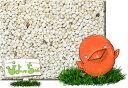 白 エゴマ 10kg×2 紙袋入 : 鳥の餌 えさ