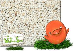 白 エゴマ 1kg×5 : 鳥の餌 えさ