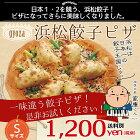 浜松餃子ピザ
