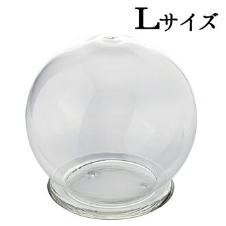 """Glass ROUND DOME GLASS l' vase vase vase vase glass vase bezelled glass base glass bowl Bowl arrangement supplies Interior gadgets glass dome glass fashion cute round ball-shaped sphere Interior displays for shops florist flower shop"