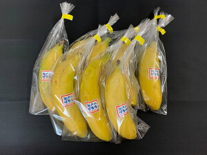 【皮ごと食べられるバナナ】「瀬戸内チばなな」8本入