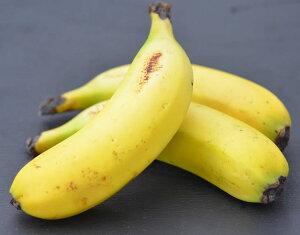 【皮ごと食べられるバナナ】瀬戸内ばなな 3本