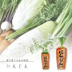 【家庭菜園】GD-392 一本でもにんじん JAN:4528757024729 【聖新陶芸】