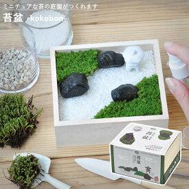 【家庭菜園】GD-719 苔盆 JAN:4528757034353 【聖新陶芸】