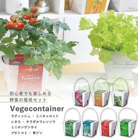 【家庭菜園】GD-333 ベジコンテナ 7種類から選べます(※プチトマトは12月〜6月のみの販売です) 【聖新陶芸】