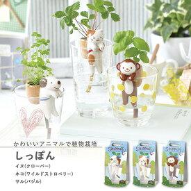 【家庭菜園】GD-660 しっぽん 3種類から選べます(イヌ/ネコ/サル) 【聖新陶芸】