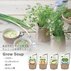 【家庭菜園】GD-795 育てるスープ 4種類から選べます(パクチー・ミニキャロット・青ネギ・ホウレン草) 【聖新陶芸】