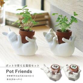 【家庭菜園】GD-860 ポットフレンズ (ワイルドストロベリーまたはクローバー) 【聖新陶芸】