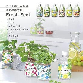 【家庭菜園】GD-863 グリーンペット 6種類から選べます(※ミニトマトは12月〜6月のみの販売) 【聖新陶芸】