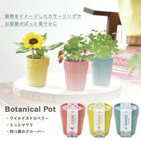 【家庭菜園】GD-904 ボタニカルポット 3種類から選べます(ワイルドストロベリー/ミニヒマワリ/四つ葉のクローバー) 【聖新陶芸】