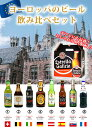 ヨーロッパのビール飲みくらべ(B)8種類 詰め合わせ 世界のビールセット 8本飲み比べセット