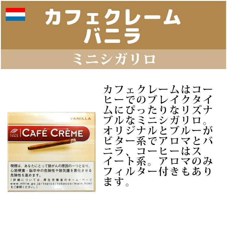 【ドライシガー】カフェクレーム バニラ ・10本入・ミニシガリロ系・オランダ産