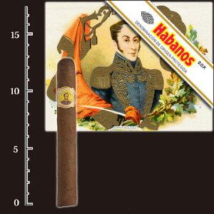ボリバーペティコロナス(バラ売り)全長129mm直径16.67mm42RG[キューバ産]