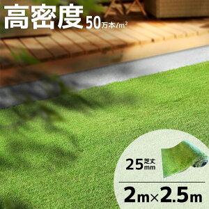 人工芝 ロール 2m×2.5m 芝丈25mm イージーライト25 リアル人工芝 芝生マット 人工芝 マット 5平米
