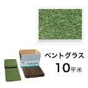 西洋芝マット ペンクロス・ベントグラス10平米 寒冷地向け天然芝 黒土仕様 送料無料