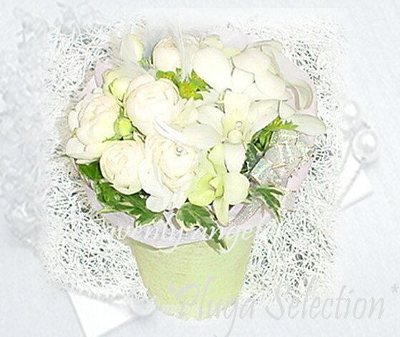 *プルガ・ヘヴンリーエンジェル*ギフト・アレンジメント・フラワー【ホワイト・カラー】Plumeria Palpitations Brand