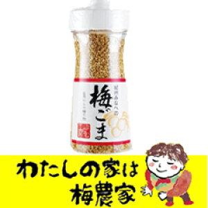梅ごまボトル125g×2本セット[ぷらむ工房 岩本食品]