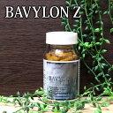 Bavylon z