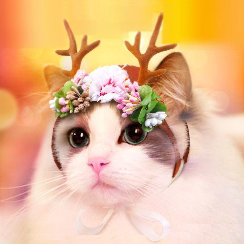 犬用被り物 猫用被り物 被り物 かぶりもの 犬用帽子 猫用帽子 帽子 鹿 小鹿 バンビ 造花 花 フラワー 犬 いぬ ドッグ 小型犬 猫 ねこ キャット 犬用品 猫用品 ペット用品 かわいい 可愛い キュート おもしろい おもしろ ブラウン 茶色