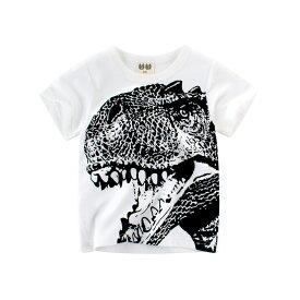 Tシャツ カットソー ラウンドネック 丸襟 丸首 半袖 クルーネック 子供用 キッズ ベビー 恐竜 Tレックス ティラノサウルス 遊び着 通学 通園 カジュアル