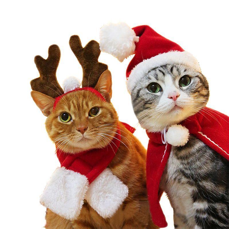 ペット用 犬猫兼用 帽子 ヘアバンド マント ケープ マフラー コスプレグッズ コスチューム クリスマス X'mas ヘッドバンド フード トナカイ サンタ帽 ぼうし イベント パーティー 仮装 変身 変装 衣装 可愛い かわいい 小物 超小型犬 小型犬