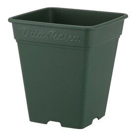 24個 260型 グリーン ロゼアスクエア ポット 鉢 おしゃれ アップルウェアー タ種D