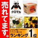 【北海道不可・要着日指定・時間指定不可】 受粉用蜂 ハチ 50頭以上 花粉・蜜・巣箱セット アグリ・トップ クロマル D…