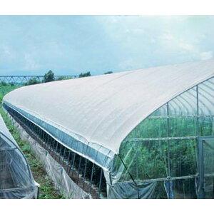 2m × 100m 白 遮光率30〜35% タキイホワイトTW 遮光ネット TW30 寒冷紗 タキイ種苗 タ種 代引不可