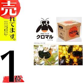 【北海道不可・要着日指定・時間指定不可】 受粉用蜂 ハチ 50頭以上 花粉・蜜・巣箱セット アグリ・トップ クロマル DX クロマルハナバチタ種【代引不可】