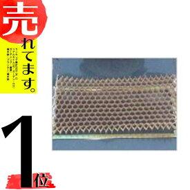 150冊 チェーンポット CP303 264鉢 ニッテン 日本甜菜製糖 タ種 DZ