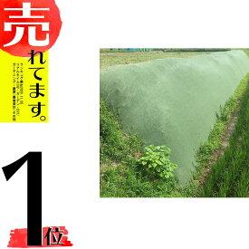 北海道配送不可 雑草抑制おまかせネット 幅2m×50m巻 (グリーン) 雑草対策 大一工業 代引不可
