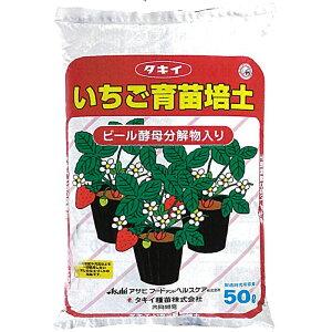 個人宅配送不可 北海道配送不可 50L×1袋 タキイの いちご用培土 イチゴ専用 無肥料型 ランナー受け 用土 培土 育苗 にタキイ種苗 タ種 代引不可