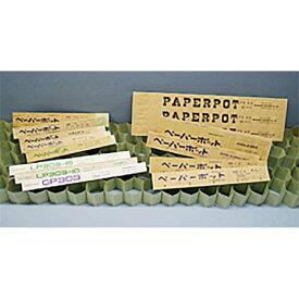 ペーパーポット No.12 12号 144鉢 3.5角×高3.8cm ニッテン 日本甜菜製糖 タ種DPZZ