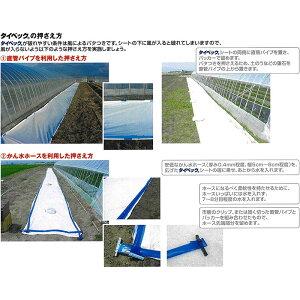 タイベックマルチ700AG1.0m×100m野菜フルーツ花卉カ施【代引不可】