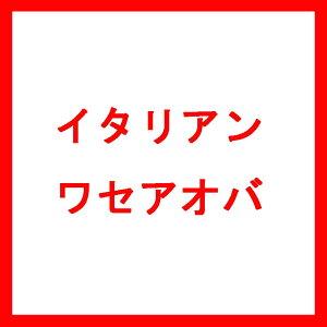 種 10kg イタリアンライグラス ワセアオバ 早生 酪農 畜産 [播種期:9〜11月] 雪印種苗 米S 代引不可