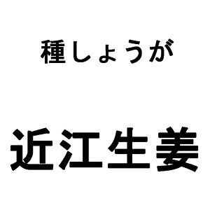 1kg 大生姜 近江しょうが タネしょうが 近江生姜 ショウガ 栽培用 種生姜 米S 日にち指定不可 代引不可