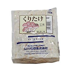 250個入 種駒 くりたけ 丸棒型 食用きのこ菌 キノコ クリタケ 加川椎茸 米S 代引不可