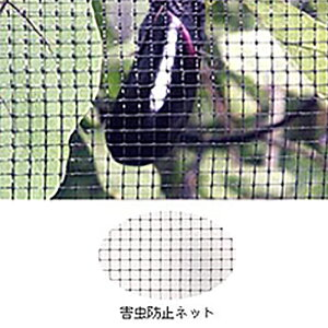 害虫防止ネット 黒 OV3018 2m×50m 目合6×6mm 33g/m2 コンウェッドネット タ種 送料無料 代引不可