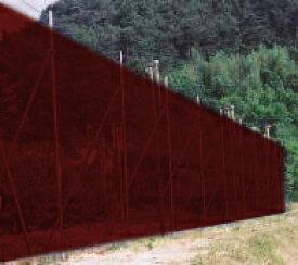 個人宅配送不可 茶 ブラウン防風ネット 4mm 目合 幅2m×50m シンセイ シN直送