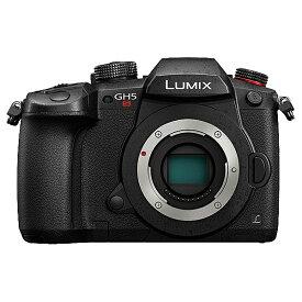 【送料無料】Panasonic DC-GH5S-K デジタル一眼カメラ LUMIX GH5S ボディ (ブラック)【在庫目安:僅少】| カメラ ミラーレスデジタル一眼レフカメラ 一眼レフ カメラ デジタル一眼カメラ