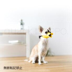 OPPO quack SS【オッポ クァック】○