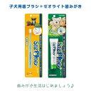 【sigone】シグワン 子犬用歯ブラシ(小さなお口用)+ゼオライトハミガキ○