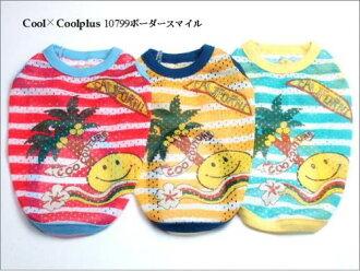 クークチュールクール X cool positive horizontal stripe smile [for the SL big dog]○