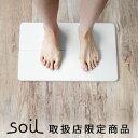 送料無料 soil バスマット ソイル gem バスマット 珪藻土バスマット【あす楽14時まで】ポイント2倍soil GEM ひる石バ…